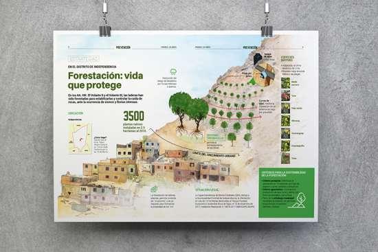 Diseño-gráfico_Infografía-Forestación-vida-que-protege-(PREDES)-1